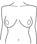 Torso with broad shoulders
